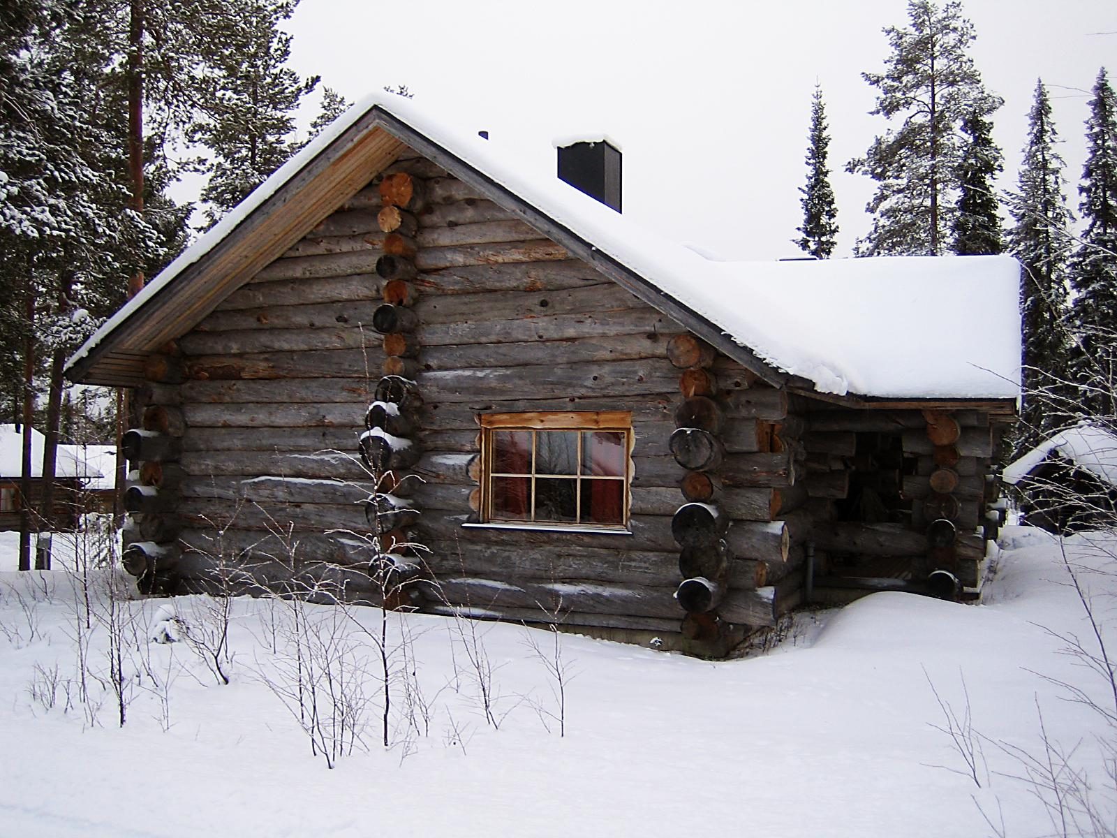 Snowy Log Cabin ~ The family history guide
